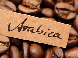 Best Price Roasted Arabica Coffee Bean From Vietnam
