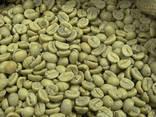 Best Price Roasted Arabica Coffee Bean From Vietnam - photo 3