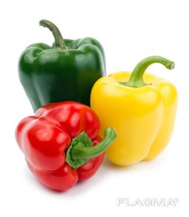 Dried bell pepper