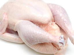Halal frozen whole chickens and parts