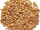 Organic Buckwheat Raw - photo 1