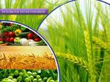 Pesticides manufacturer and supplier worldwide - photo 1