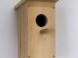 Solid pine birdhouse, bird feeder