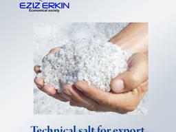 Техническая соль