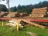 Timber from pine. Wood materials. lumber from the manufactur - photo 5