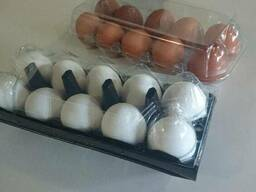 Transparent packaging for chicken and quail eggs for 6, 10,
